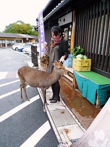 cu-cal in 奈良 『イ・ルンガ』 (奈良デート1)_f0134268_2353876.jpg