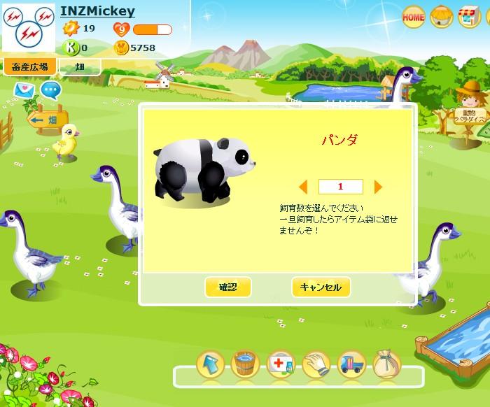 パンダがやってまいりました!!_f0011179_933555.jpg