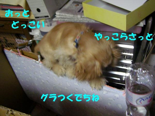 b0067012_23575758.jpg