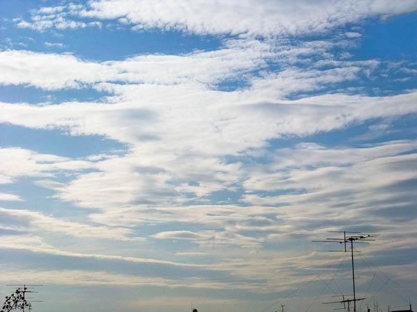 晴れのち曇り_f0077521_15245398.jpg