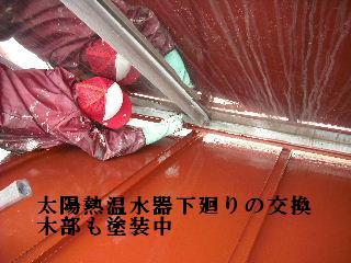 f0031037_20101952.jpg