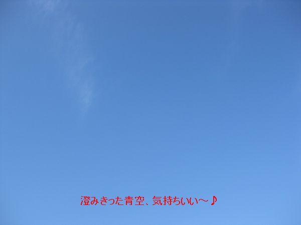 b0148945_029915.jpg
