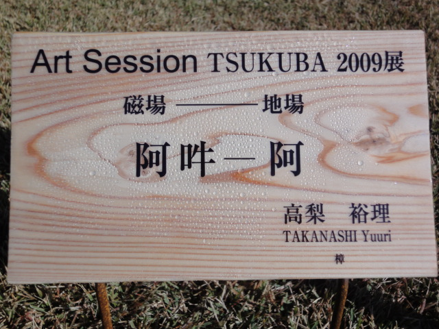 Art Session TSUKUBA 2009展 その2_b0124462_14175193.jpg