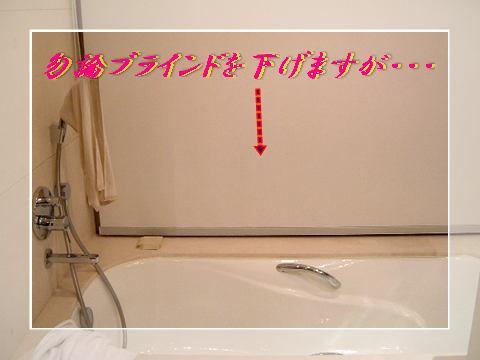 b0078675_117221.jpg