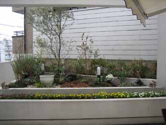 11/16   中庭テラス植栽&白塗りウッドフェンス_e0029584_2129207.jpg