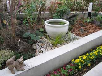 11/16   中庭テラス植栽&白塗りウッドフェンス_e0029584_21312272.jpg