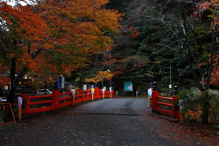 京都・洛北 秋色撮影 ~その1~_e0051888_2425862.jpg
