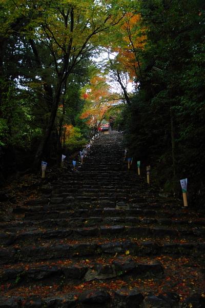京都・洛北 秋色撮影 ~その1~_e0051888_2454220.jpg