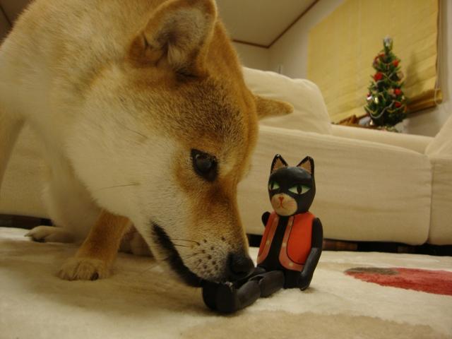 黒猫ミミからの忠告_a0126590_22545066.jpg