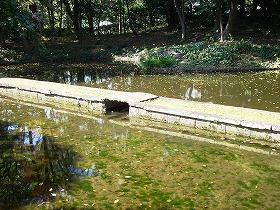 海の景 (小石川後楽園 ② 江戸の庭園)_c0187004_2140525.jpg