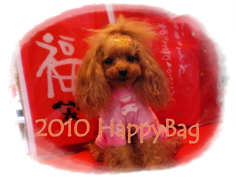 2010年 Happy Bag!!!!!!_b0084929_18164665.jpg