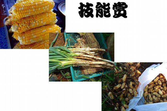 野菜つくり.....今年の優勝はだれだ!_b0137932_1831644.jpg