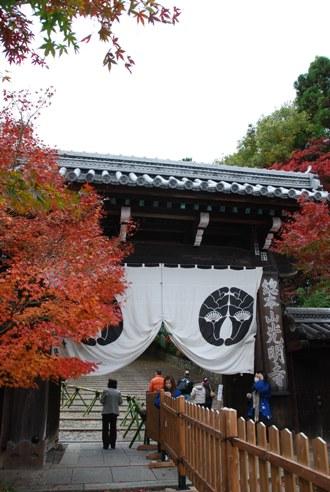 京都へ_c0099133_14224979.jpg