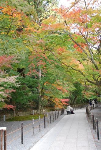 京都へ_c0099133_14244280.jpg