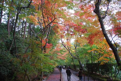 京都へ_c0099133_14251986.jpg