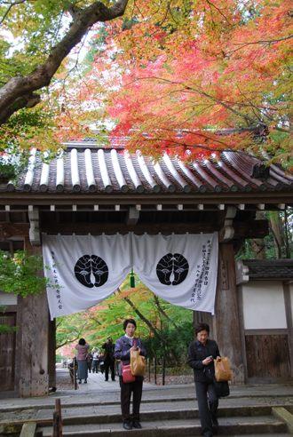 京都へ_c0099133_14281240.jpg