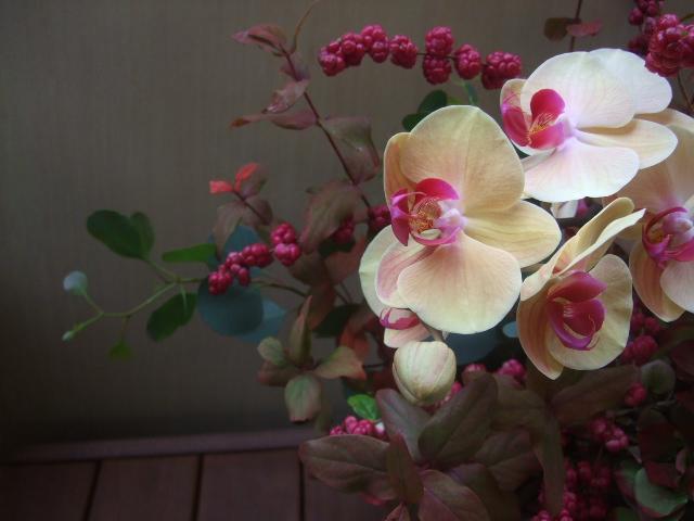 オークリーフ(赤い紫陽花と胡蝶蘭のアレンジメント)_f0049672_1327130.jpg