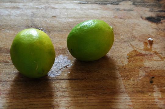自家製レモンで_a0115906_1749351.jpg
