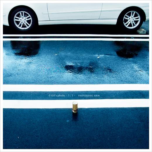 冷たい、雨・・・_e0117517_16574327.jpg