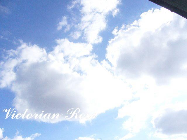 青空♪_c0229423_14564983.jpg