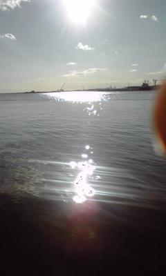たまらず釣行〜船橋港。_c0157833_1555081.jpg