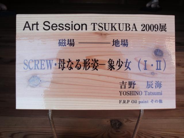 Art Session TSUKUBA 2009展 その3_b0124462_16145167.jpg