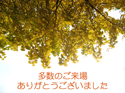 c0084862_546146.jpg