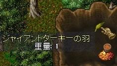 b0096491_23105251.jpg