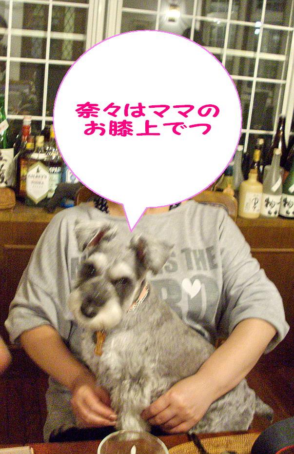 c0138198_20482867.jpg