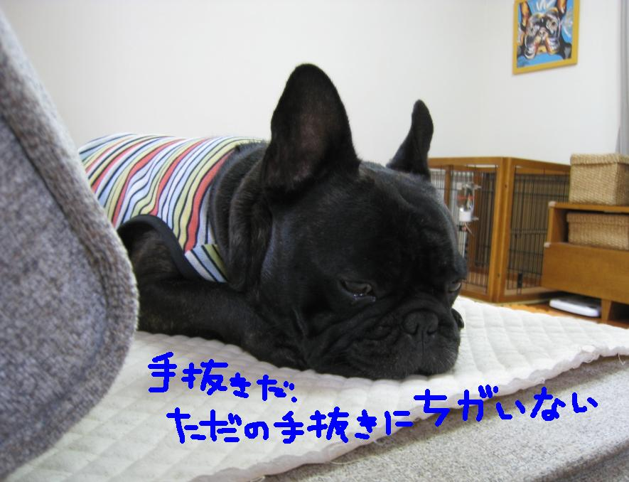c0113109_0444433.jpg
