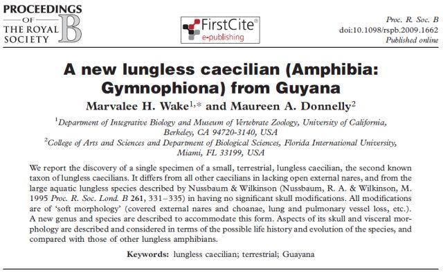 ガイアナで発見された肺のないアシナシイモリ_c0025115_213325.jpg