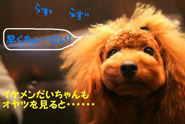 b0130018_13213693.jpg