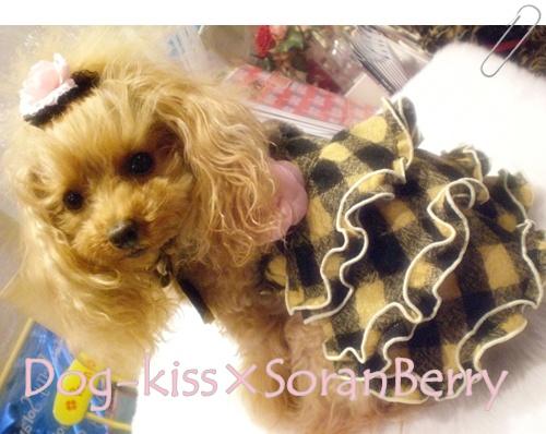 Dog-kiss×SoranBerry チェックヒロイン・ワンピ_b0084929_1842176.jpg