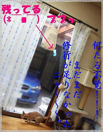 e0148232_20323815.jpg
