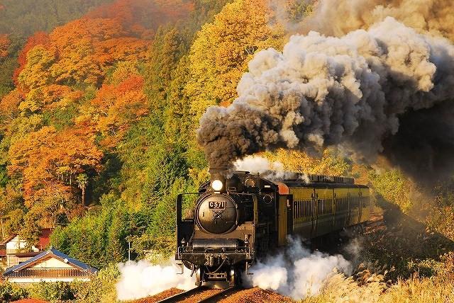 出張の電車で思う・・・_c0173762_21194986.jpg