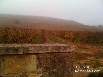 photo  31/10/09 romanee conti_f0072767_20255532.jpg