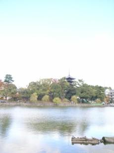 中川政七商店_b0052772_21533855.jpg