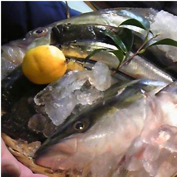 あったかお鍋と鮮魚☆/岩井編_a0131903_16265230.jpg