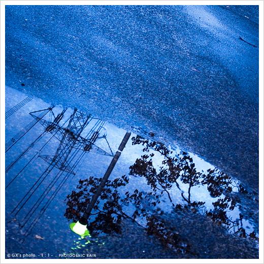 雨上がり・・・_e0117517_20541971.jpg