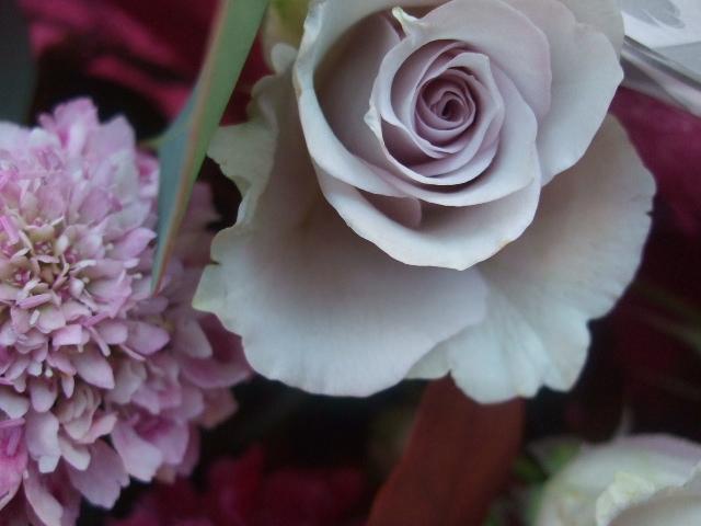 オークリーフ(バラ・シオンの花束)_f0049672_1717568.jpg