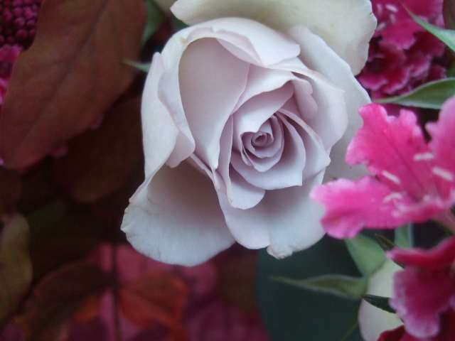 オークリーフ(バラ・シオンの花束)_f0049672_17181986.jpg