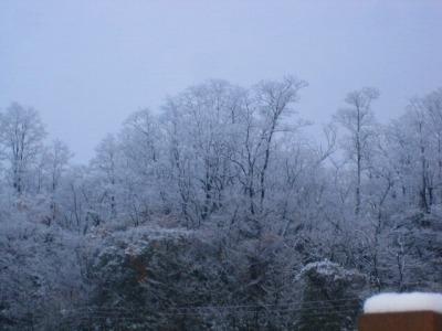秋田県小坂町シリーズ 樹木に咲く雪の花を愉しむ_b0011584_6144594.jpg
