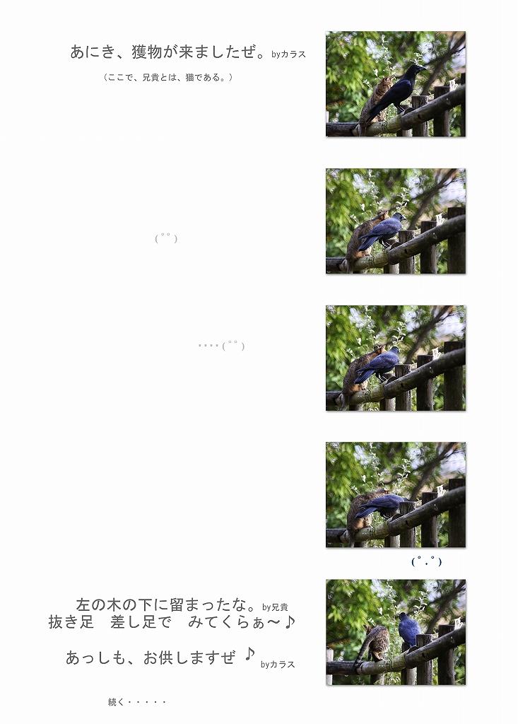 f0144289_2015988.jpg