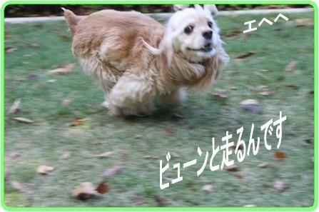 c0128303_1122763.jpg
