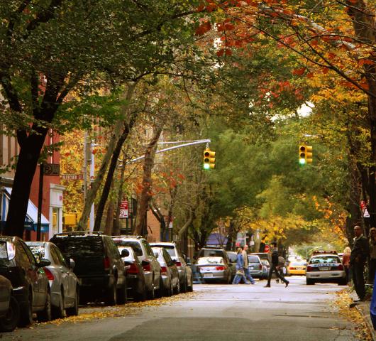 ニューヨークの紅葉、住宅街も美しいです_b0007805_22461710.jpg