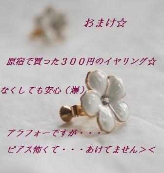 d0104926_0463376.jpg