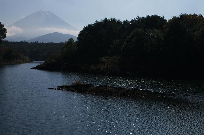 2009 富士山の秋(7)~子抱き富士と秋の調べ(精進湖)_f0155048_2282185.jpg