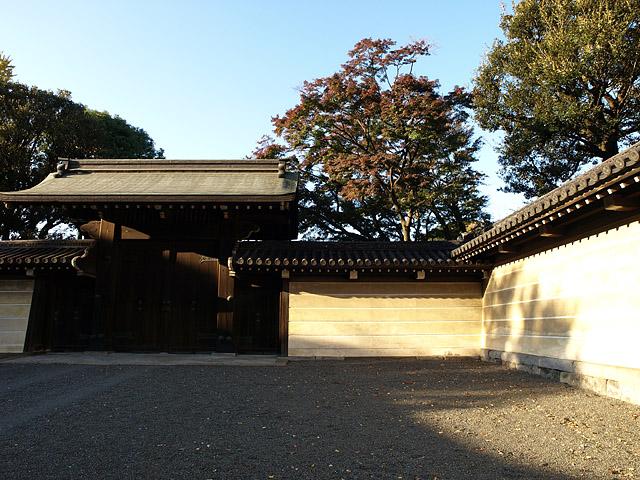 上野公園 ~ 護国寺 (11/21)_b0006870_20185558.jpg