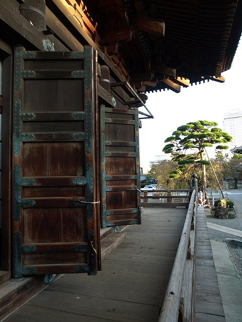 上野公園 ~ 護国寺 (11/21)_b0006870_20191664.jpg