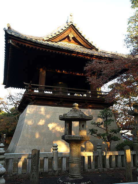 上野公園 ~ 護国寺 (11/21)_b0006870_20202587.jpg